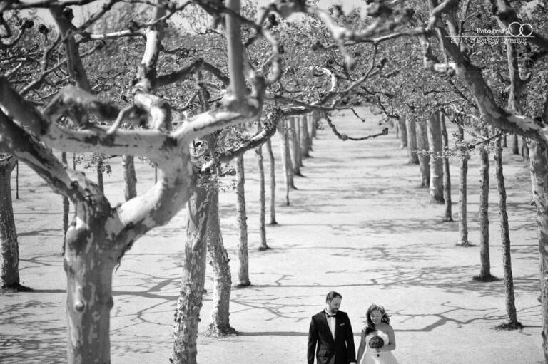 Hochzeitsfotograf-frankfurt-standesamt-trauung